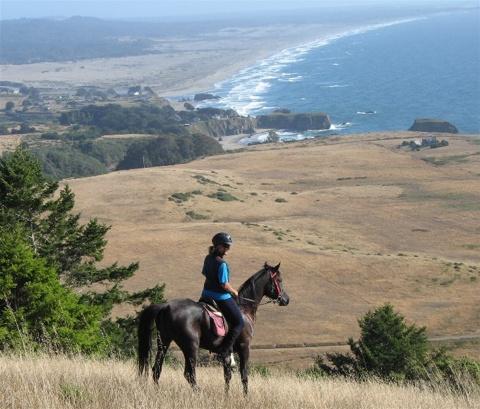 Alex and Zanzi on a conditioning ride at Willard Jackson's Newport Ranch